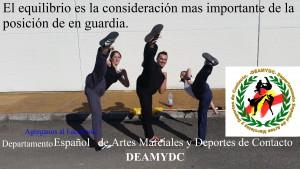 DEAMYDC 02