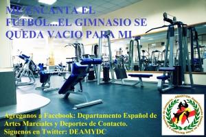 DEAMYDC gimnasio - copia