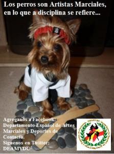 DEAMYDC perro-karateka