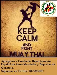 deamydc muay thai 170715