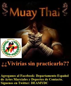 deamydc muay thai vivirias