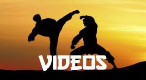 videos para pagina
