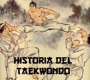 historia del universal taekwondo utd 1