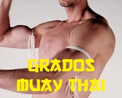 grados-muay-thai
